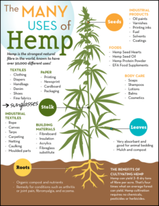Supplements just a small part of hemp story